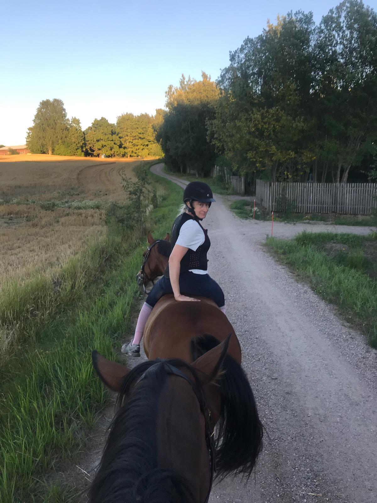 Kun hevonen on kunnossa, niin…