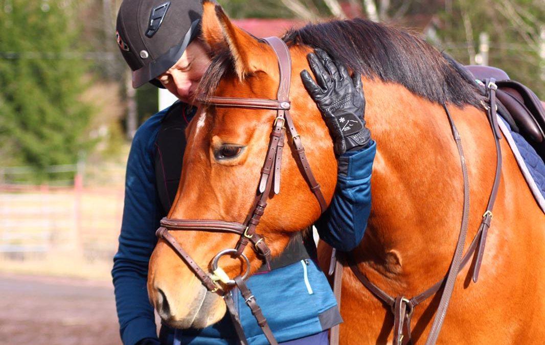 Onko hevosen kasvattaminen salatiedettä?